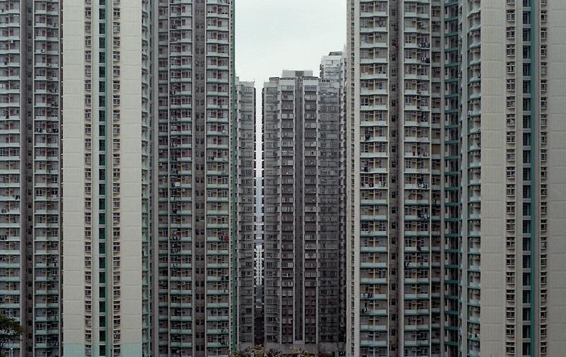 yhong1995